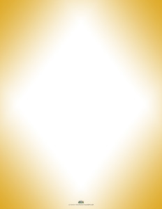 Four Corners - Century 21 Yellow